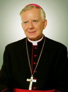 AbpMJedraszewski