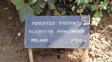 Pątnicy z Łodzi w Instytucie Jad Waszem